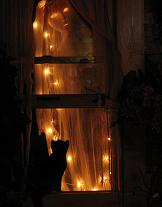 ghost in window with cat Spooky halloween ghosts.